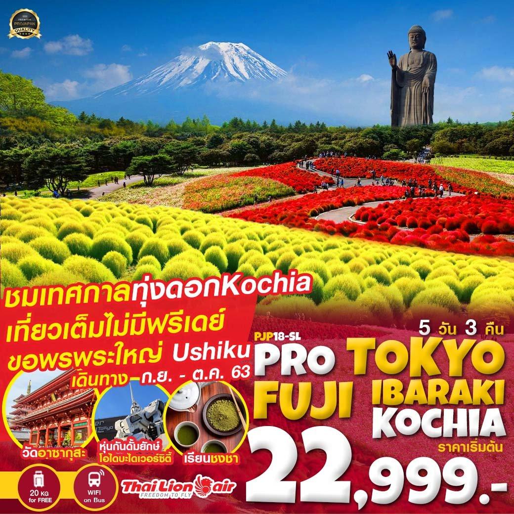 ทัวร์ญี่ปุ่น [ PJP18-SL ] ทัวร์โตเกียว PRO TOKYO FUJI IBARAKI KOCHIA 5D3N